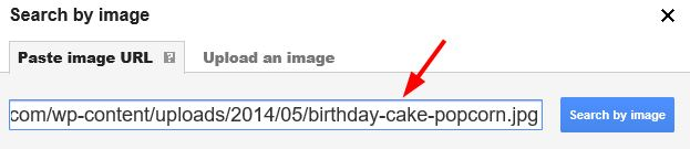 google-search-image-by-url